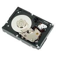 DISCO DURO DELL 2 TB 7.2K RPM SATA 6GBPS 3.5 PULGADAS MOD. 400-AUST CABLEADO PARA SERVIDORES T140, R240